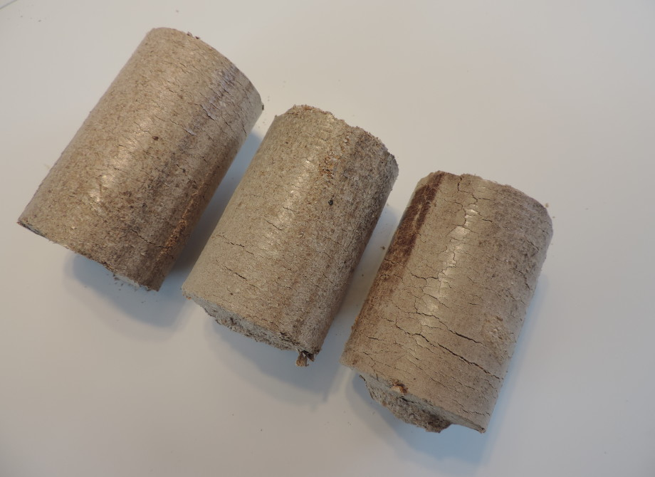 Wood briquettes of oak